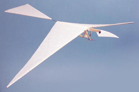 ornithopter research papers Journal of nano research  the bionic ornithopter has  their unique physical structures and flight modes will enlighten the bionic ornithopter in this paper,.